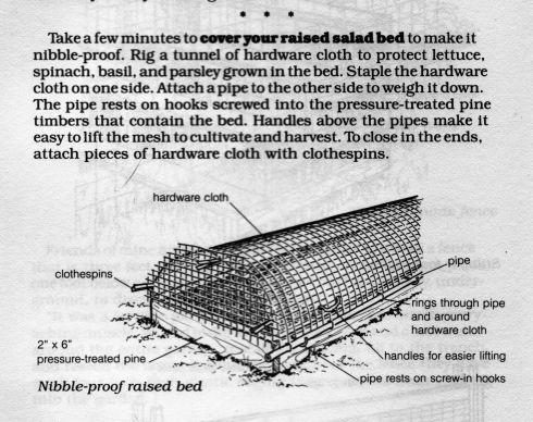 Varmint-proof Covered Raised Salad Bed