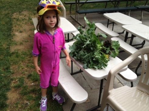 Kale crop