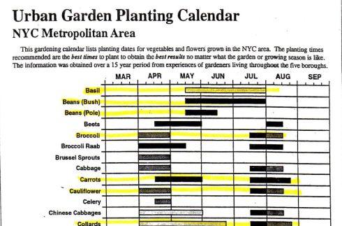 NYC Planting Calendar pic