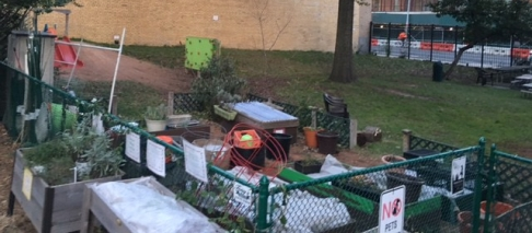 Garden in November 2017, after our winterization work.